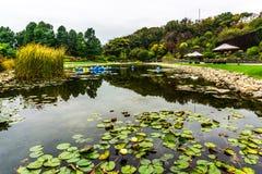 Сад 16 Китая Шанхая ботанический стоковые фотографии rf