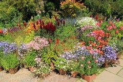 Сад коттеджа в больших доме & садах Dixter в лете Стоковое фото RF