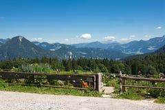 сад коттеджа alps баварский Стоковое Фото