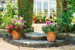 Сад красивой задворк флористический Стоковое Изображение