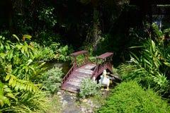 Сад красив стоковые фотографии rf