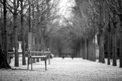 сад Люксембург Стоковое Изображение RF