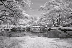сад мирный Стоковое Фото