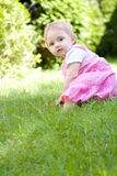 сад младенца стоковая фотография rf