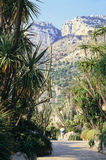 сад Монако Стоковые Фото
