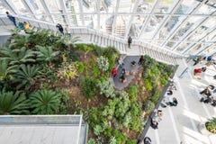 Сад неба в городе Лондона стоковая фотография rf