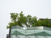 Сад неба на крыше Стоковые Изображения