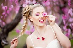 сад невесты цветения Стоковые Изображения