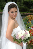 сад невесты Стоковые Изображения RF
