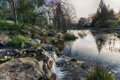 Сад Орегона весной Стоковые Изображения RF