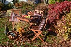 Сад осени с украшениями сидеть и осени Стоковое Изображение RF