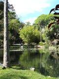 Сад Рио-де-Жанейро стоковые изображения