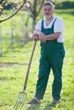 сад садовничая его старший человека Стоковое фото RF