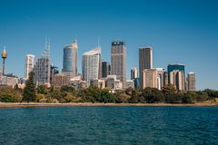 Сад Сиднея ботанический с небоскребами Стоковая Фотография