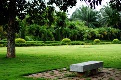 сад тропический стоковое изображение rf