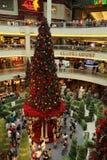 сад украшений рождества опирающийся на определённую тему Стоковое Изображение RF