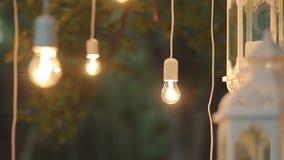 Сад украшения лампы на ноче, волшебный лес, электрические лампочки и зарево висят на дереве в лесе видеоматериал