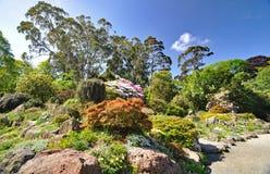 Сад утеса на садах Крайстчёрча ботанических Стоковые Фотографии RF