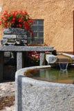 сад фонтана двора Стоковое фото RF