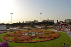 Сад чуда, Дубай Стоковые Изображения RF