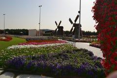 Сад чуда Стоковые Изображения RF