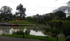Сад японская Аргентина стоковые изображения