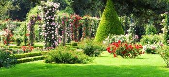 сад Стоковая Фотография