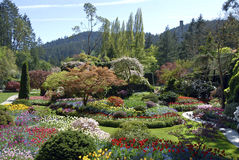 сад buchart Стоковые Фото