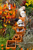 Сад Halloween Стоковое Изображение RF