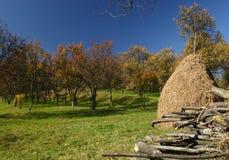 сад haystack Стоковая Фотография RF