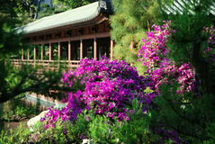 сад Hong Kong lian nan Стоковые Изображения RF
