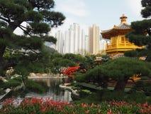 Сад Nan Lian, Гонконг стоковая фотография rf