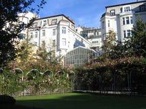 сад prague поднял Стоковая Фотография