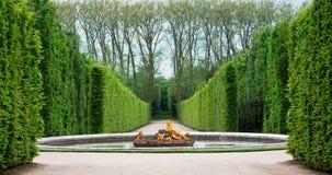 сад versailles Франции Стоковые Фотографии RF