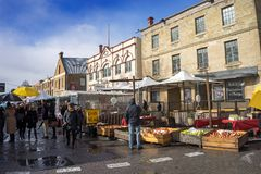 Саламанка выходит Тасманию вышед на рынок на рынок Стоковая Фотография RF