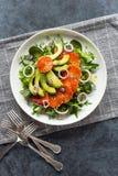 Салат апельсина крови авокадоа с фенхелем над зелеными цветами стоковые фотографии rf