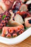 салат восьминога Стоковое фото RF