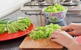 салат вырезывания Стоковые Фотографии RF