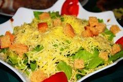 Салат в плите стоковые изображения rf