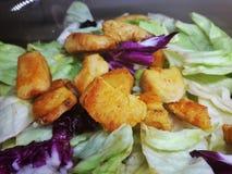 Салат еда здоровая близкое поднимающее вверх салата листьев дня солнечное стоковая фотография