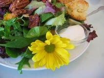 салат еды Стоковые Изображения