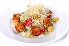 Салат зажаренных томатов рыб и вишни Стоковые Изображения