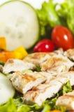 салат зажженный цыпленком Стоковое фото RF