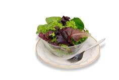 салат зеленых цветов поля Стоковая Фотография RF