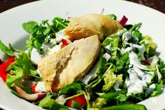 салат из курицы Стоковая Фотография