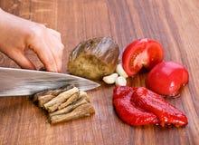 салат ингридиента баклажана Стоковая Фотография