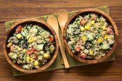 Салат квиноа и овоща стоковые изображения rf