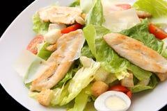 салат крупного плана цыпленка цезаря Стоковое Фото
