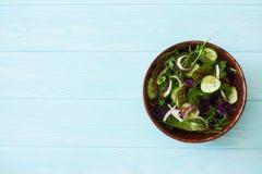 Салат листьев смешанного салата, frisee, arugula, базилик и огурец Стоковая Фотография RF