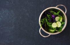 Салат листьев смешанного салата, frisee, arugula, базилик и огурец Стоковые Изображения RF